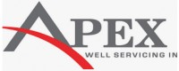 Apex Well Servicing Inc.